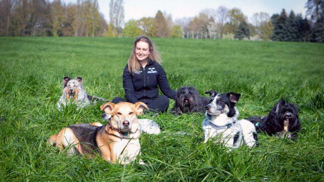 einfach-huendisch-jacky-rauen-mit-hunden