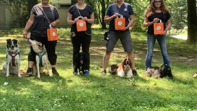 Kurs mit Doggybag